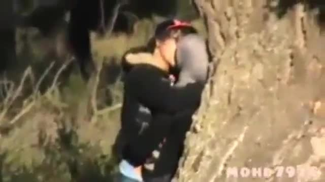 Amateur Arab couples fucking in park