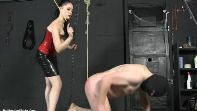 Hot Mistress Sophia gives Ballbusting Lesson to naughty slave